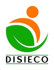 Logo DISIECO 235px