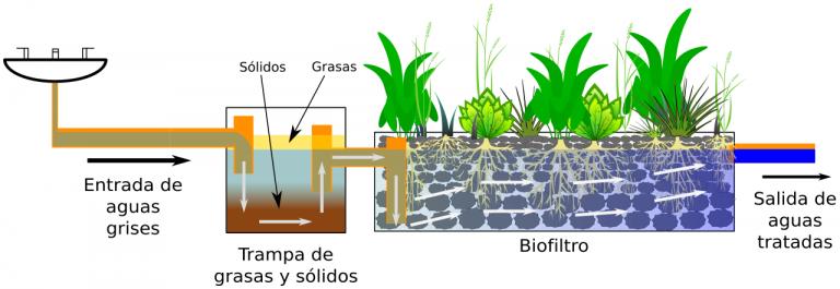 Esquema biofiltro y trampa de grasas