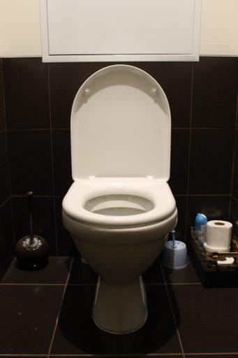 ceramic-toilet-